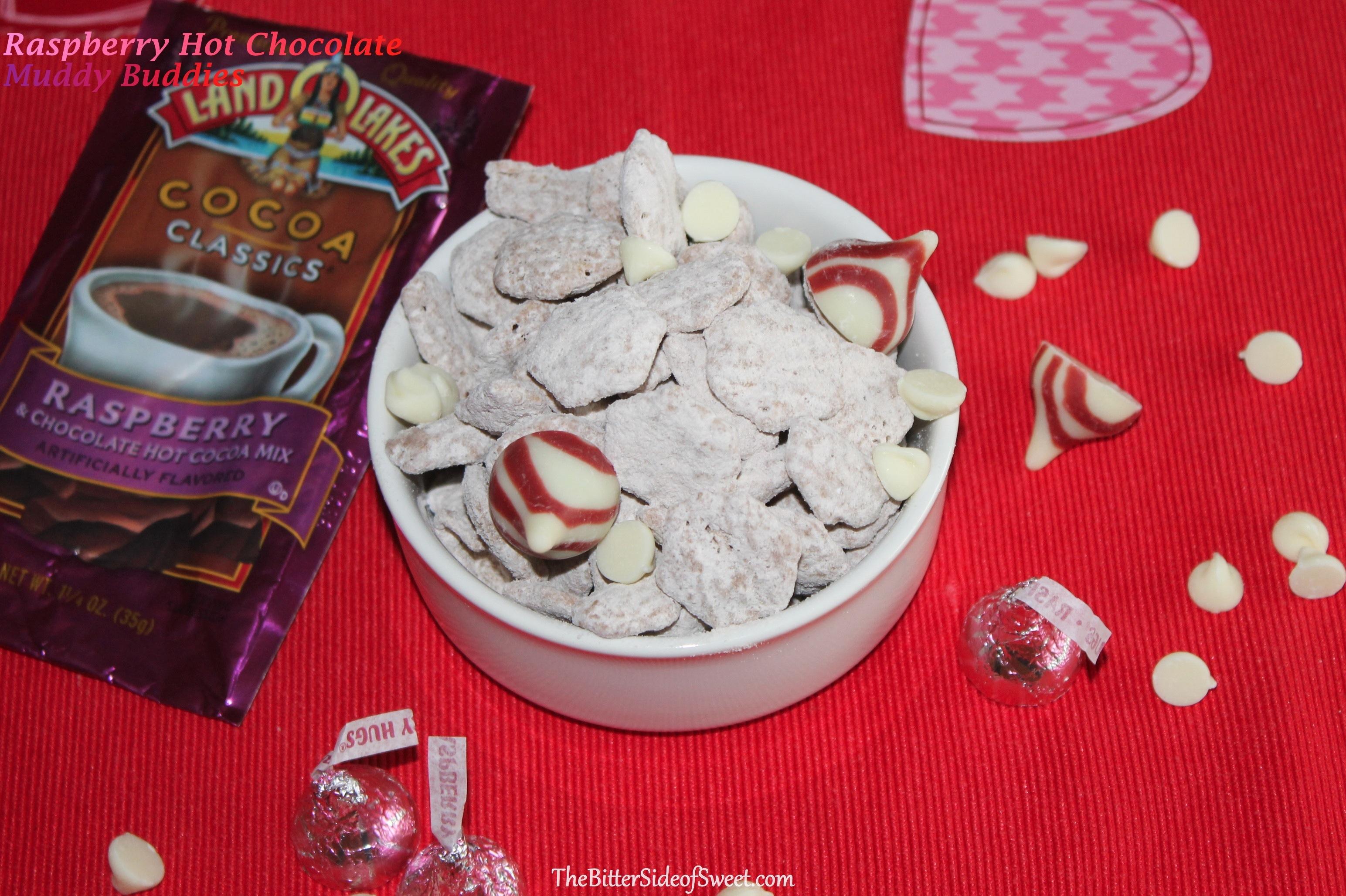 RaspberryHotChocolateMuddyBuddies2